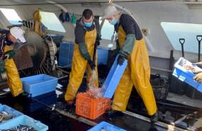 ep pescadores en barco pesquero