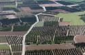 ep campos huertas minifundios huertos agricultura arboles explotacion agraria