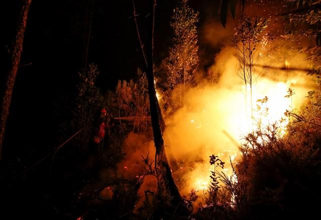 Portugal eleva hasta 64 los fallecidos en el incendio de Pedrógão Grande