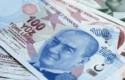 lira turca portada