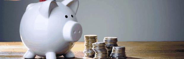 ahorro jovenes portada cerdo