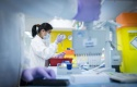 test-en-laboratoire-pharlacie-credits-astrazeneca
