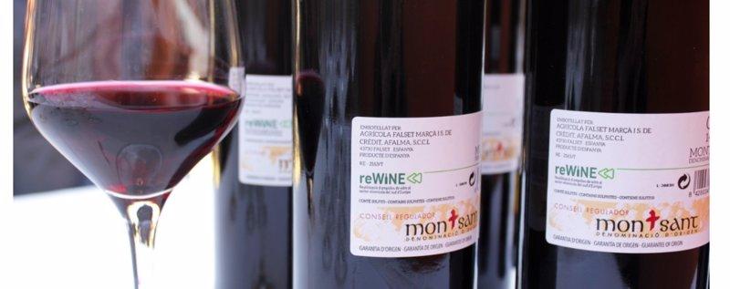 ep el proyecto rewine constata que el sector vitivinicola catalan podria reducir un 28 su huella de