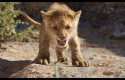 ep imagenla nueva versionrey leon